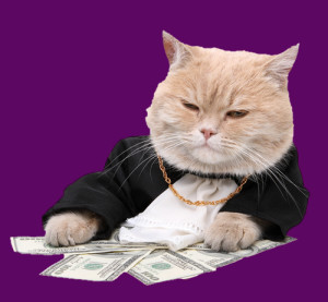 cat-money-gangster
