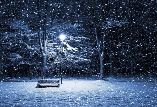 winter landscape snow falling