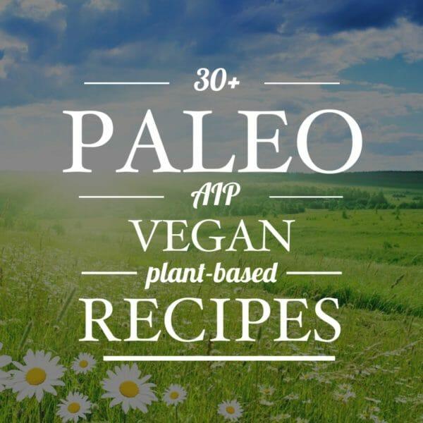 paleo aip vegan recipes